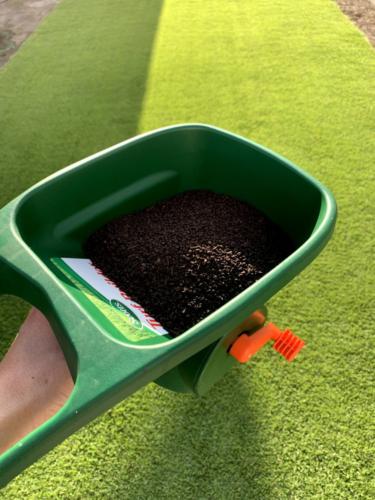 2020年9月上旬 芝生 固形肥料散布